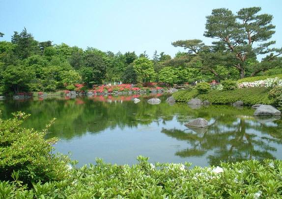 an azalea in Japanese garden, and reflected to the surface of the pond.